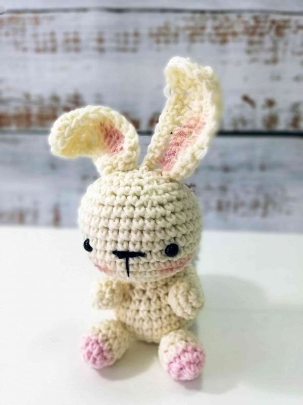 Bunny Rabbit - Crochet Plushy Toy 01