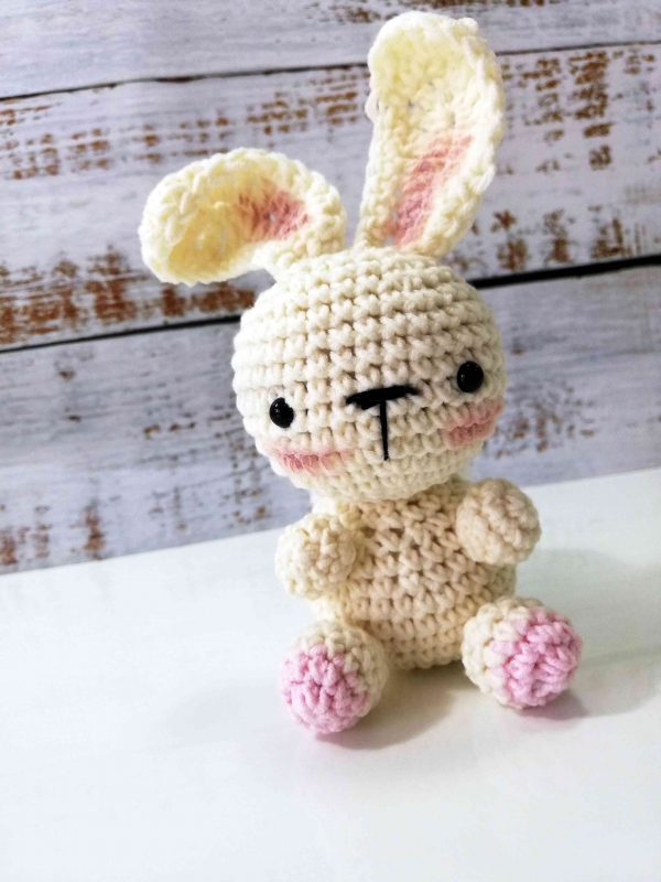 Bunny Rabbit - Crochet Plushy Toy