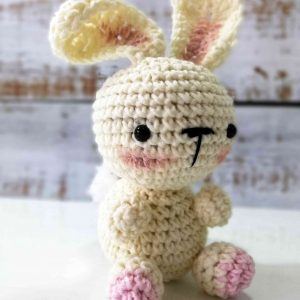 Bunny Rabbit – Crochet Plushy Toy