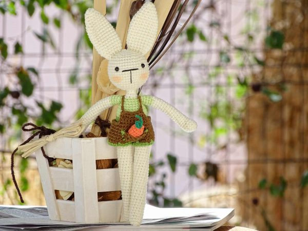 funny-bunny-with-long-ears-the-green-one-carrot