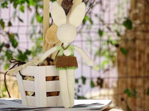 funny-bunny-with-long-ears-the-green-one-tail
