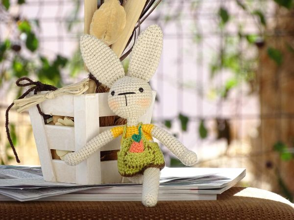 funny-bunny-with-long-ears-the-yellow-one